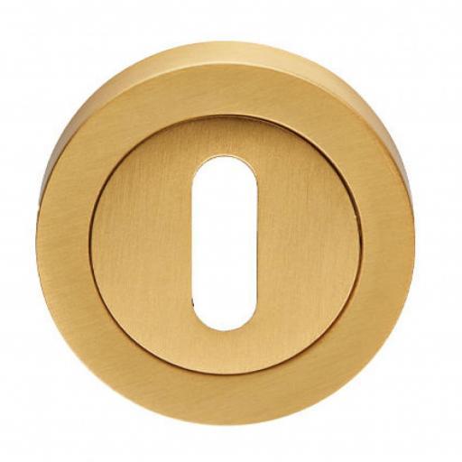Lock Profile Escutcheon - Satin Brass